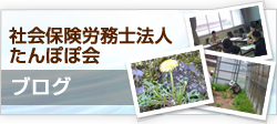 社会保険労務士たんぽぽ会ブログ